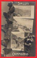 [DC6133] LAGO MAGGIORE - CANNOBIO - SALUTI DA - Viaggiata 1909 - Old Postcard - Verbania