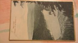 AK Bayrischer Wald Mit Arbersee Von Der Seewand Aus - Deutschland