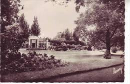 Cpsm 85 LUCON - La Serre Du Jardin Dumaine - Nr 134 Barraud - D8 - Lucon