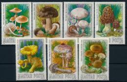 Hungary Ungarn Mushrooms Pilze Set (7) °BM0480 MNH - Pilze