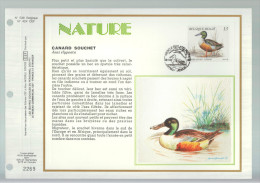 BUZIN / CEF / COB 2334 / TAILLE PLUS PETITE DE +/- 1 CM EN LARGEUR ET 0,5 EN HAUTEUR - 1985-.. Birds (Buzin)