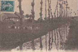 PETIT NOIR           CANAL DU SAULCOYS - France