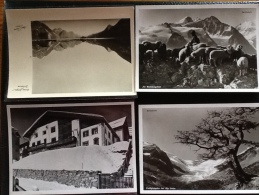 Albert Steiner 11 Cartes Postales - Cartes Postales