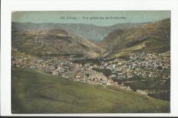LIBAN , VUE GENERALE DE ZAHLEH