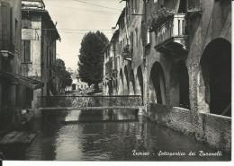 TV070 - TREVISO - F.G. VIAGGIATA 1953 - Treviso