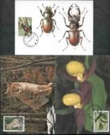 2002 Italia, Maximum Flora Fauna Invertebrati , Serie Completa - Cartoline Maximum