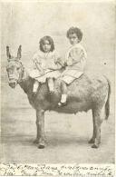 84/CPA A 1900 - Enfants Sur Ane (tamponnée D'Avignon) - Frankrijk