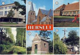 Herselt  Meerzicht AVM 1252 - Herselt