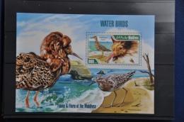 N 014 +MALDIVES 2013 BIRDS VOGELS OISEAUX MNH NEUF ** - Maldivas (1965-...)
