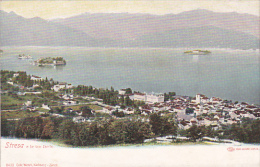 Italy  Early Unused Postal Card, Stresa - Collections