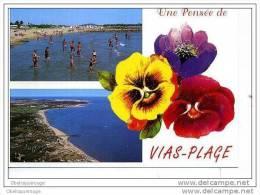 34 VIAS PLAGE VUE DE TRES HAUT  2 VUES   VERS 2002 ANIMATION - France