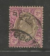 TRANSVAAL 1902  Used Stamp(s) Edward VII 2d Lilac Saccnr. 104 - South Africa (...-1961)