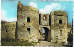 LOUDUN (Haute Marne) LA PORTE DU MARTRAY ( XVe Siècle).  // COULEURS NATURELLES - Autres Communes