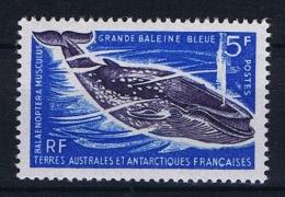 TAAF: Yv Nr 22 MNH/**, 1966 - Franse Zuidelijke En Antarctische Gebieden (TAAF)