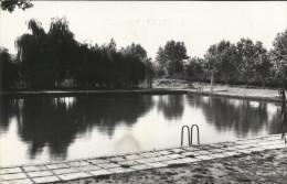 Postal De JUNEDA. LERIDA.- Piscina Municipal. CIRCULADA 1964. - Lérida