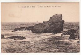 CPA Belle Ile En Mer, Le Chien à La Pointe Aux Poulains (pk12878) - Belle Ile En Mer