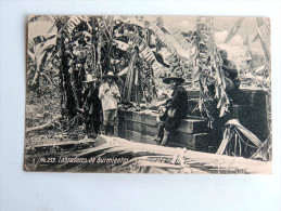Carte Postale Ancienne : GUATEMALA : Labradores De Durmientes - Guatemala