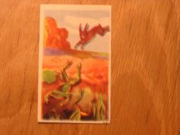 Chromo  N° 77  Le Lièvre Et Les Grenouilles   Chocolat Clovis Pepinster Chocolaterie Belge Trading Card Chromos - Autres