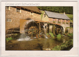 """"""" Hexenlochmühle """" Erbaut 1825 , Einzige Zweirädrige Mühle Im Schwarzwald - Water Mills"""