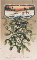 CPA Gaufrée, Gui Et Joli Paysage, 1907 ( 2 Scans) - Nieuwjaar