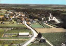 44 CHATEAU THEBAUD VUE GENERALE AERIENNE - France