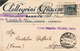 PADOVA - COMMERCIALE PELLEGRINI GIACOMO COMMERCIO IN LEGNA E CARBONE 1927 - Padova (Padua)