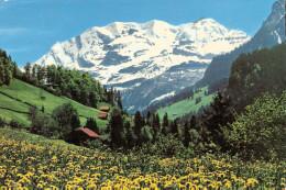 PostkaartZwitserland  B21 Blick Auf Die Blümlisalpgruppe Maienzei Bei Scharnachtal Gegen Kiental - Ohne Zuordnung