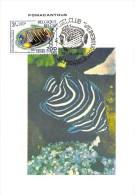 Carte Postale - Pomacanthus - Timbre 1e Jour Correspondant - Timbres (représentations)