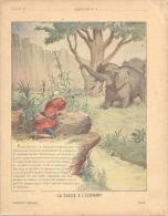 Ancien Protege Cahier XIX Ième Illustré Thème Animaux  éléphant La Chasse à L'éléphant  Collection Godchaux - Animaux