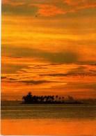 C P M---ILES---POLYNESIE-FRANCAISE--motu Tapu  à Bora-bora----voir 2 Scans - Polynésie Française