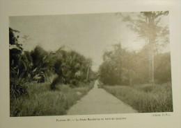 Vietnam. La Route Mandarine En Forêt De Lataniers. Photogravure. 1931. - Prints & Engravings
