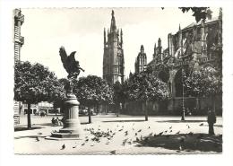 Cp, 33, Bordeaux, Les Pigeons De La Cathédrale Saint-André, La TourPey Berland, Voyagée 1963 - Bordeaux