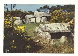 Cp, 56, Près De Carnac, Monuments Mégalithiques De Mané-Kerioned, écrite 1976 - Carnac