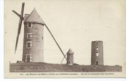 CPA- Les Moulins De Mouilleron En Pareds : But De Promenade Des Touristes - Mouilleron En Pareds