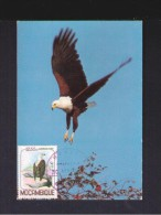 MOZAMBIQUE 1980 Animals Faune Fauna Animaux Oiseaux Birds Aves Passereaux FISH EAGLE Carte Maximum Cards Mc384 - Eagles & Birds Of Prey