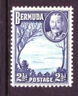 Bermuda 110  * - Bermuda