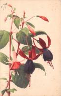 ¤¤  -   FLEURS   -    Illustrateur      -  ¤¤ - Fleurs, Plantes & Arbres