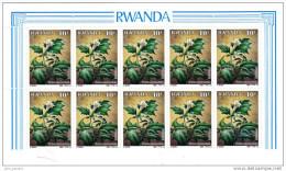 Bloc Block  ** De 10 Timbres Of 10 Stamps Plante Médicinale  Medicinal Plant Datura Rwanda 1988 - Rwanda