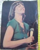 DARYL DRAGON-ROCK STAR,0NE PAGE FROM CIRCUS MAGAZINE - Manifesti & Poster