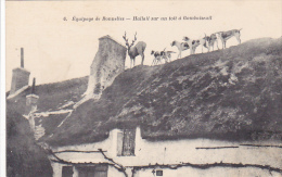 22613 Chasse à Courre -équipages De Bonnelles. Hallali Toit Gambaiseuil  -6 Lib Nouvelle Rambouillet Cerf Dos Chien - Chasse