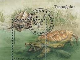 Azerbaycan Azerbaidjan 1995 Schildpad Turtle Tortue Yvertn° Bloc 15 (°) Used Cote 3,50 Euro Faune - Azerbaïdjan
