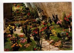 CP 10*15/K1109/DOUE LA FONTAINE CITE DES ROSES - Doue La Fontaine