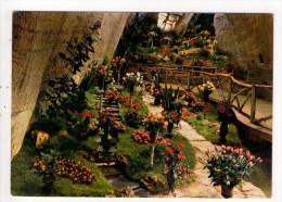 CP 10*15/K1111/DOUE LA FONTAINE CITE DES ROSES GROTTES DES ARENES - Doue La Fontaine