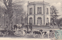 22631 Chasse à Courre Foret De Dreux Pavillon Rendez Vous Chasse   -1 Foucault -chien Meute Cheval Cor - Chasse