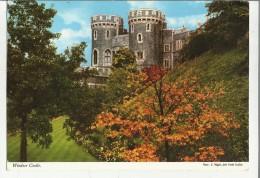 74949  Windsor Castle - Windsor Castle