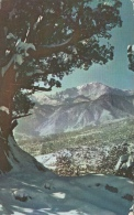 Pikes Peak In Winter - Colorado - Etats-Unis