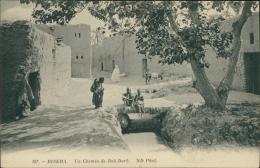 ALGERIE  BISKRA / Un Chemin De Bab-Dab / - Biskra