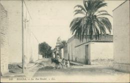 ALGERIE  BISKRA / La Rue Baudet / - Biskra