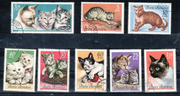 K9 Romania Rumänien Used Cat Katze Pet Lovers Haustieren - Timbres
