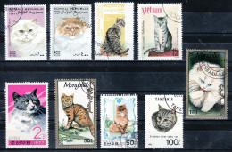 K9 Cat Katze Pet Lovers Haustieren - Mix 1 -  Beautifull Stamps - Timbres